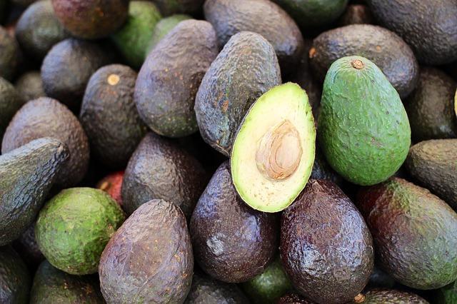 HASS Avocado - Fresh Avocado from South Africa
