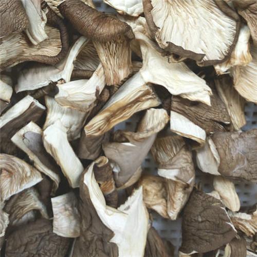 sliced oyster mushroom