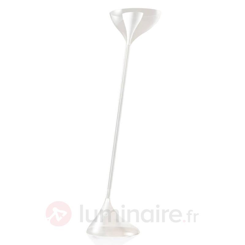 Lampe à poser design extravagante Floob - Lampadaires design