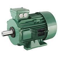 three-phase induction motors with aluminum frame - LSES High-efficiency IE2 and Premium efficiency IE3