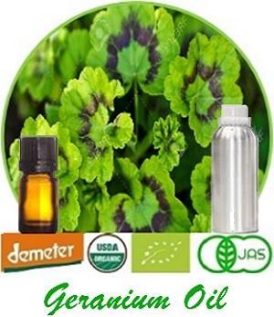 Geranium Oil - 100% Pure Natural Geranium Oil
