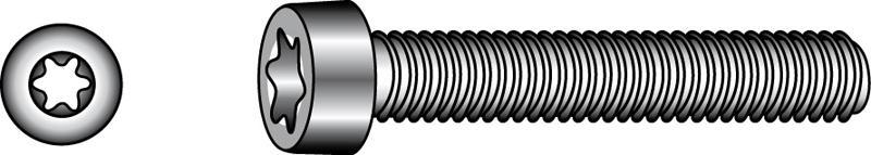 Zylinderschrauben mit TX-Innensechsrund-Antrieb - Material A2 | A4