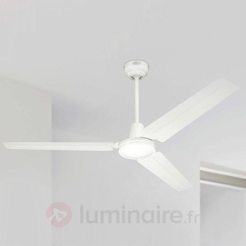 Ventilateur Industrial, 4 vitesses réglables - Ventilateurs de plafond