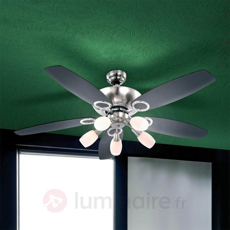 Ventilateur de plafond Jerry à 5 lampes - Ventilateurs de plafond modernes