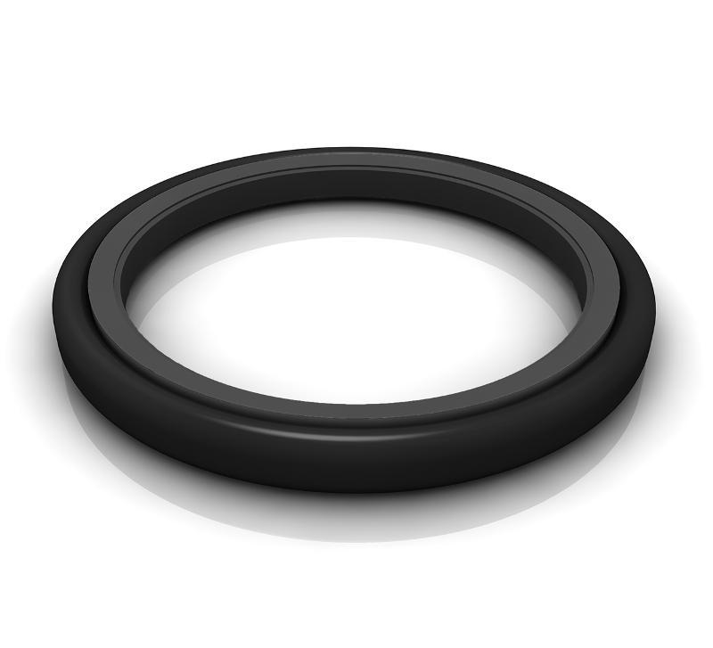 Rod Seals - Turcon® Glyd Ring® T