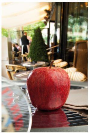 Apples - Fruits - Variety : Royal Gala