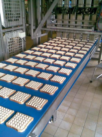 DEL/SYNC - Positive drive conveyor belt