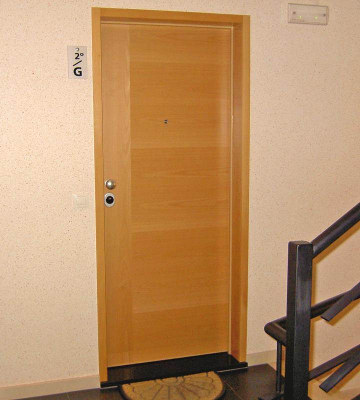 Apartment Security Fire door