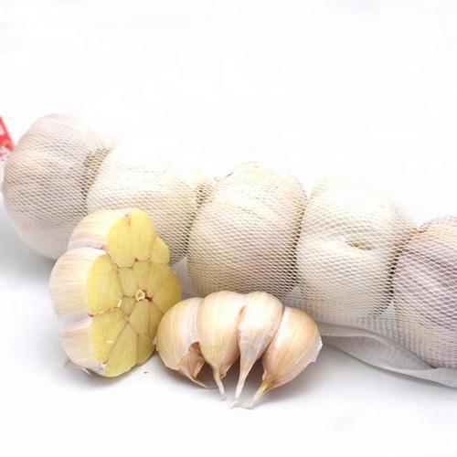 Weißer Knoblauch - Chinesischer normaler weißer Knoblauch