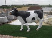 Animaux en résine - vache en résine : trés belle vache en résine de taille réell