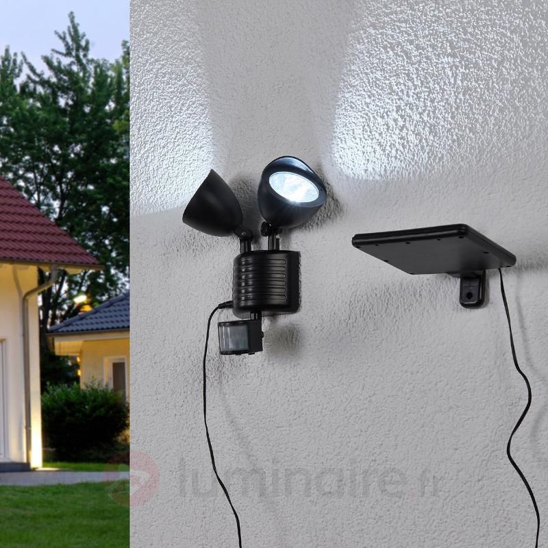 Projecteur solaire LED à deux lampes Tamar - Lampes solaires avec détecteur