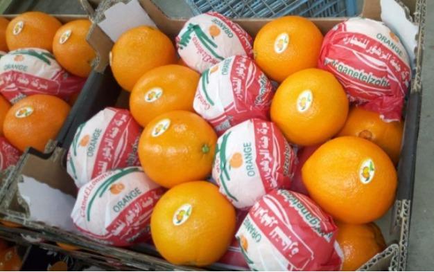 Valencia Orange - Biologica