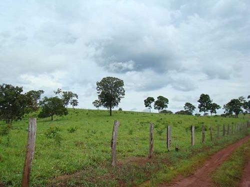 Farmland for sale in Tocantins Brasil - Reference: FARM TO-001