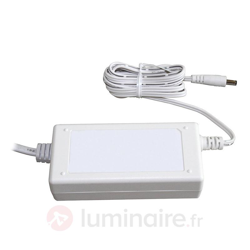 Driver LED 36 W, 24 V pour Galway 6690 - Transformateurs LED