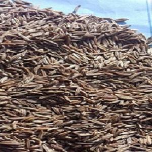 caraway seeds - caraway seeds