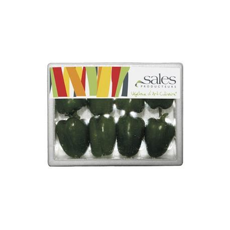 Mini poivron vert - Mini légumes Français