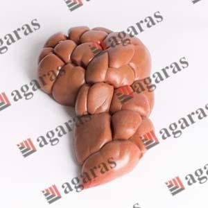 BEEF OFFAL - Beef kidneys