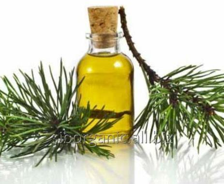 fir needle oil (Abies sibirica)