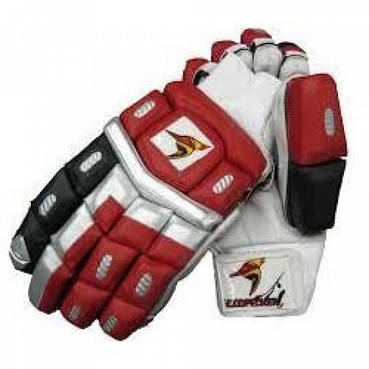 Safety Cricket Gloves - crickets gloves and pad