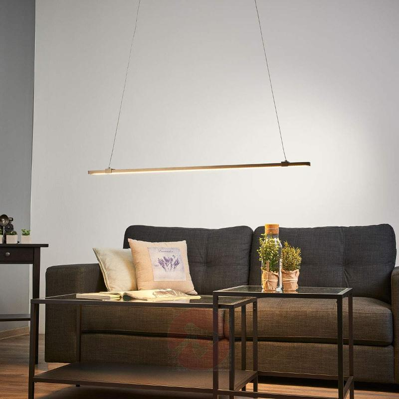 Puristic LED pendant light Levi - Pendant Lighting