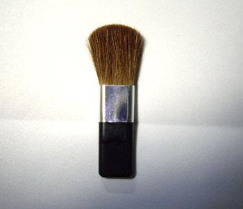 Brush - B07