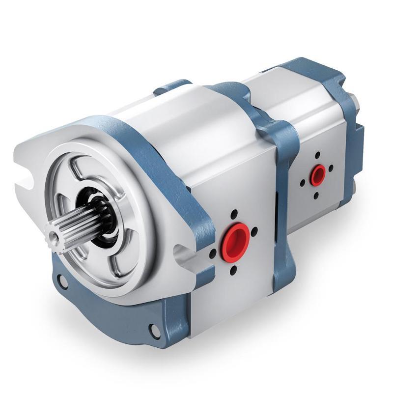 Pompe ad ingranaggi - corpo in alluminio - Pompe e motori ad ingranaggi