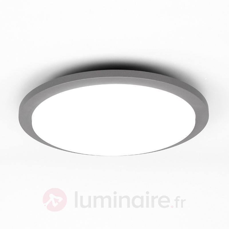 Benton - Plafonnier ext. LED avec détect. - null