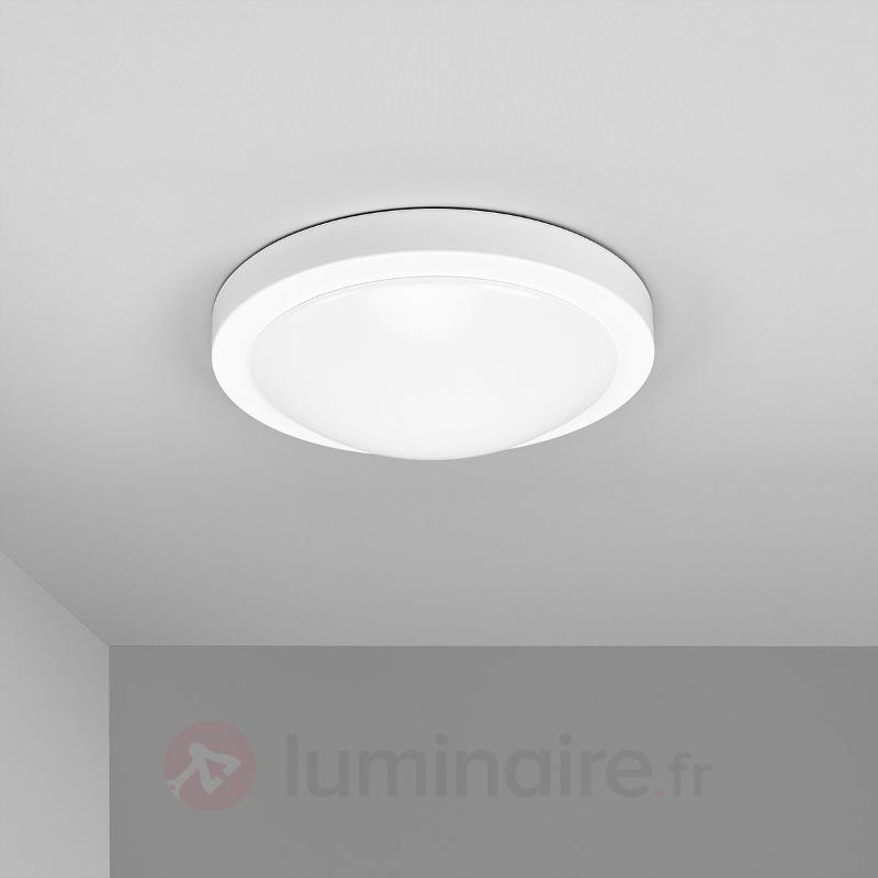 Plafonnier LED Aras blanc, IP44 - Salle de bains