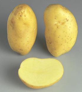 Potatoes - Yellow skin