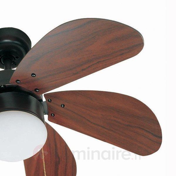 Beau ventilateur de plafond PALAO, marron - Ventilateurs de plafond lumineux