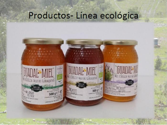 ¡REBAJAS! MIEL ECOLOGICA 500 GRS. 5,00€/Und. - Miel ecológica, de gran calidad, directa del productor, en tarro de 500 gr.