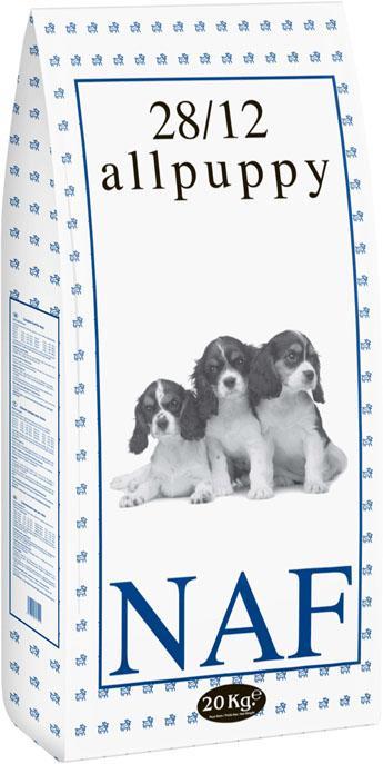 Puppy - null