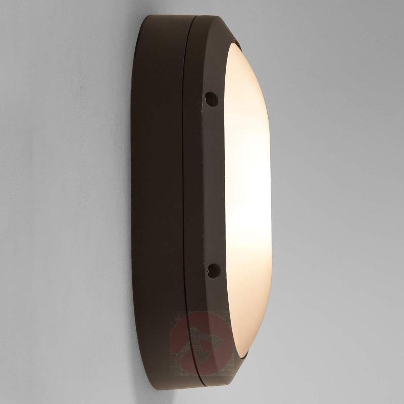 Arta Oval - an energy-efficient outdoor wall light - Outdoor Wall Lights