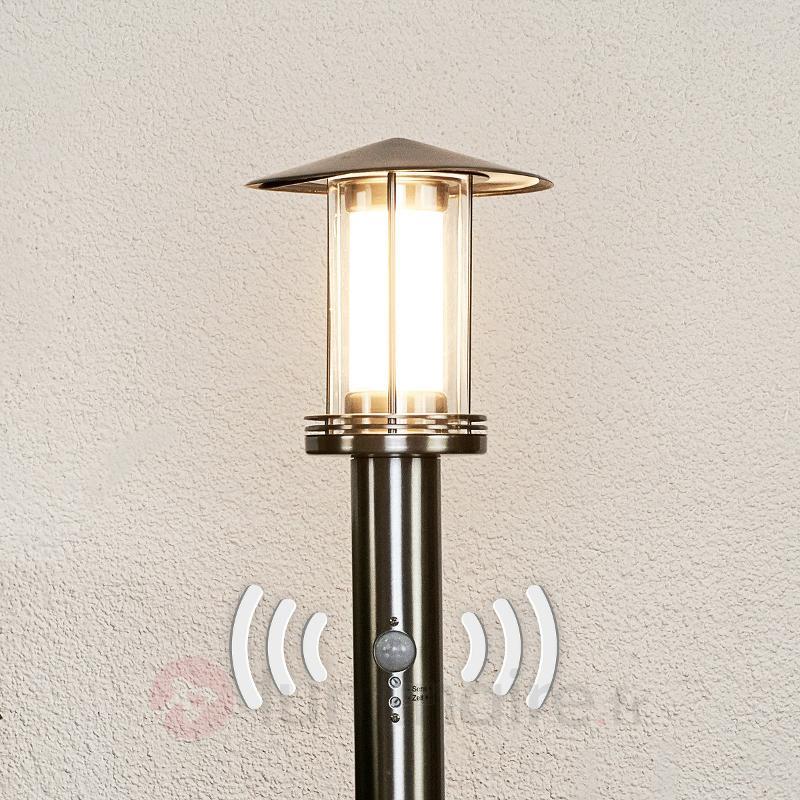 Borne lumineuse LED Swantje en inox à détecteur - Bornes lumineuses avec détecteur