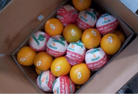 Valencia naranja - Orgánica