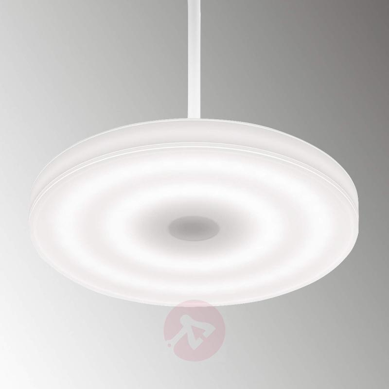 Round s30L - a high-quality LED hanging light - indoor-lighting