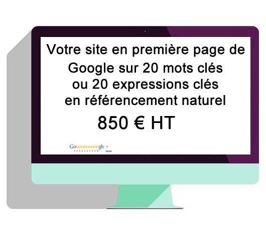 20 pages de votre site en première page de Google,  - en référencement naturel sur les 20 mots clés ou les 20 expressions de mots clés