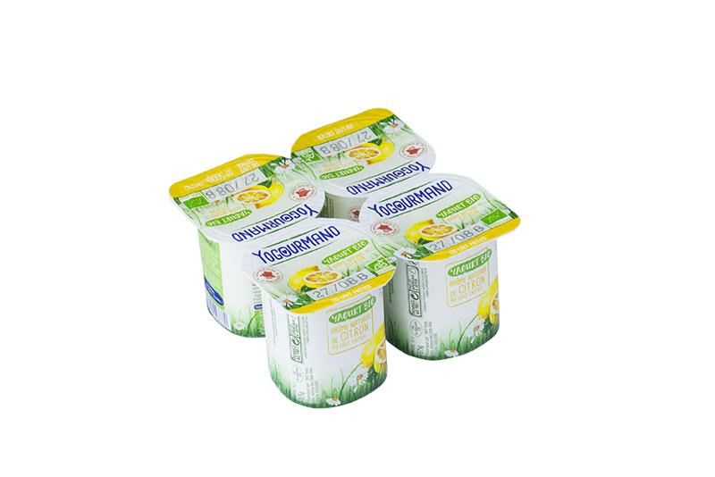 Yaourt Yogourmand Bio aromatisé - Produits laitiers
