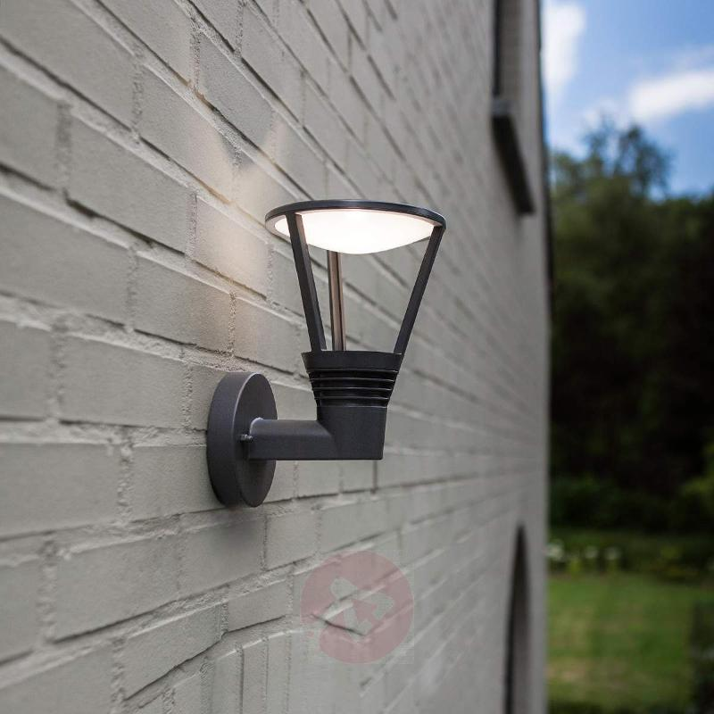 Industrial-themed Ladi LED exterior wall light - Outdoor Wall Lights