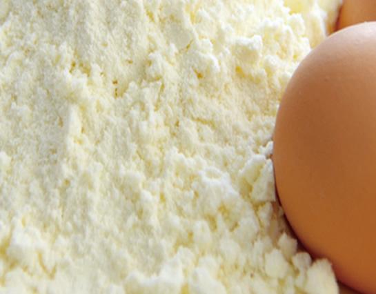 Egg White Powder - Supplements