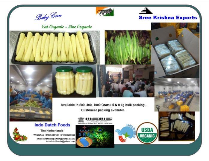 Fresh Baby corn - vegetables
