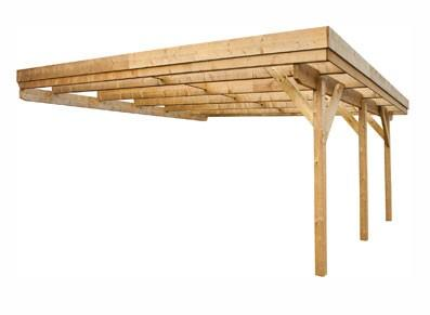 Abri en bois adossé