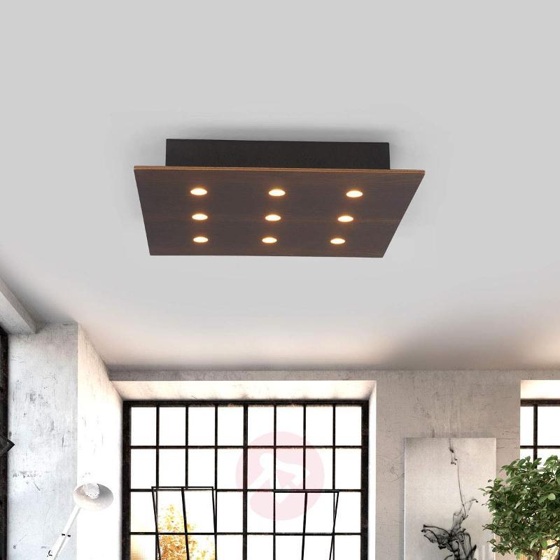 Juri - elegant LED ceiling light made of oak - Ceiling Lights