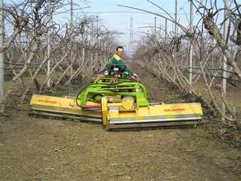 TRITURADOR CALDERONI duplex - Equipamento para fruticultura