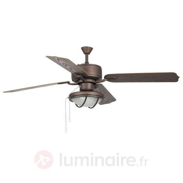 Ventilateur de plafond HIERRO de couleur marron et - Ventilateurs de plafond lumineux