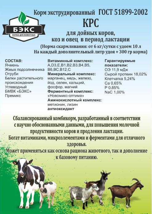 Cattle feed -