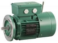 Asynchronous brake motors