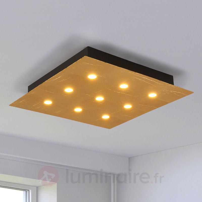 Plafonnier LED vive Juri or - Plafonniers LED