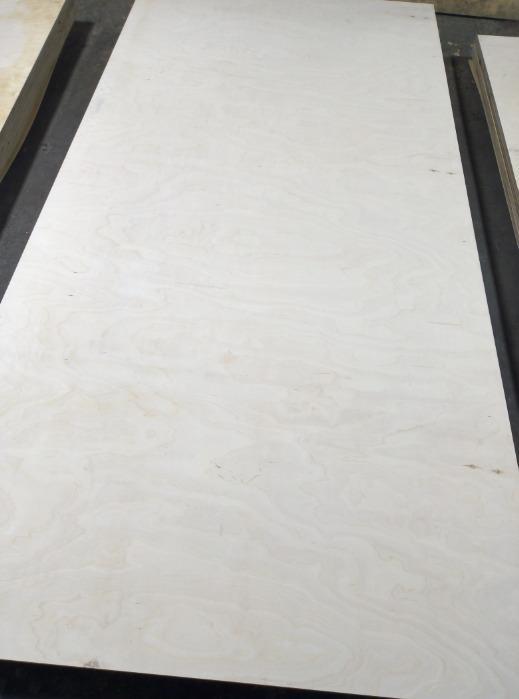 Contraplacado de bétula - Contraplacado de bétula FSF de alta resistência à água