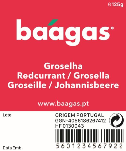 Red currant/Groselha - baagas